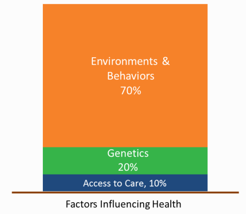 Key Factors Influencing Health